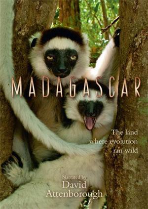 致命任务之马达加斯加
