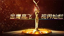 第二届中国金鹰电视艺术节