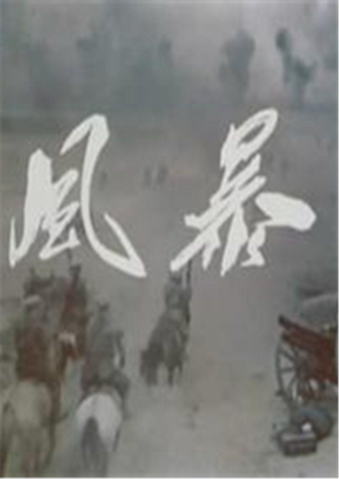 风暴(抗战片)