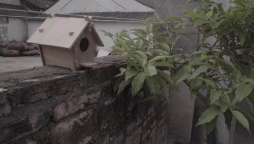 芒种时节手工打造鸟窝
